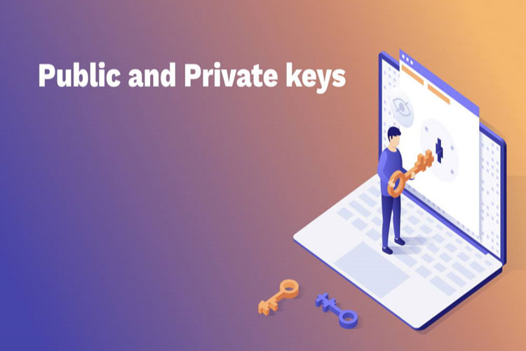public-key-va-private-key-la-gi-transaction-va-adress-bitcoin-la-gi-1